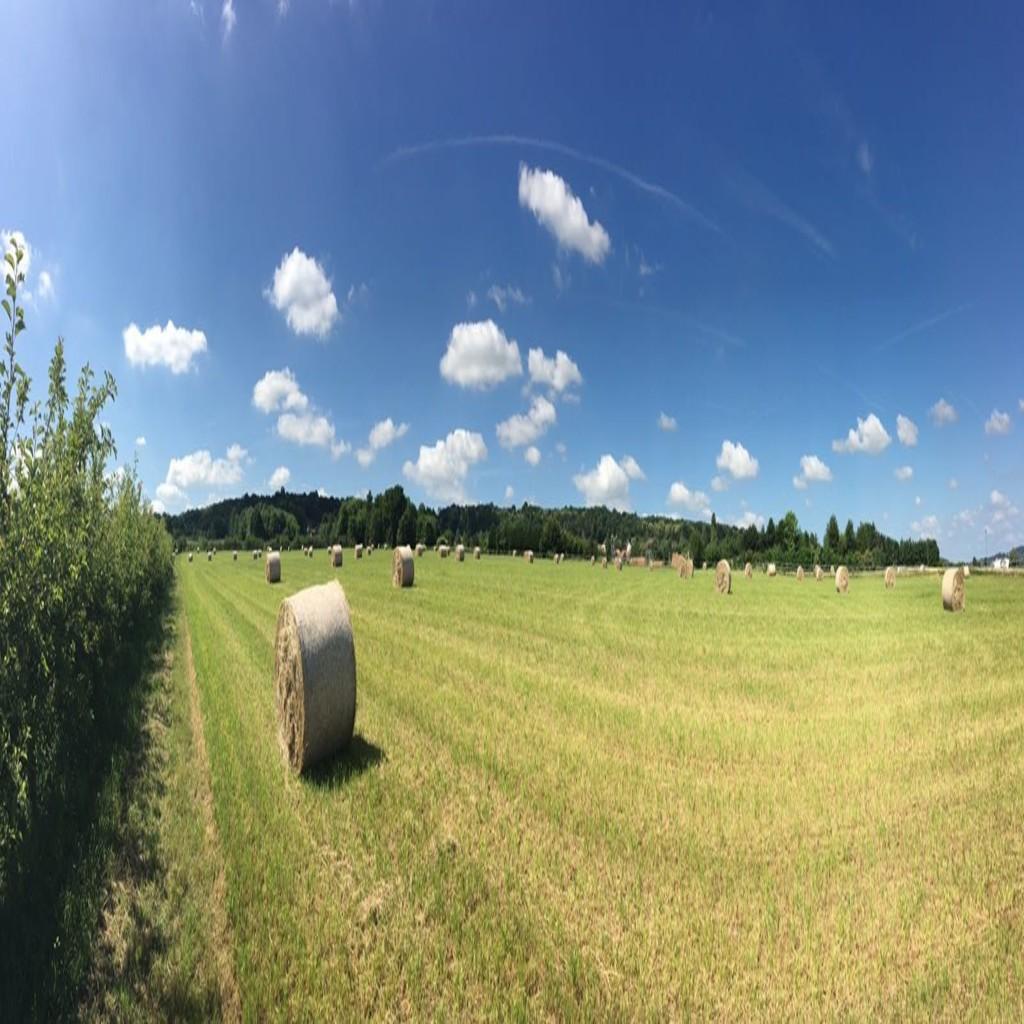 La commune d'Aigremont vous souhaite un bel été